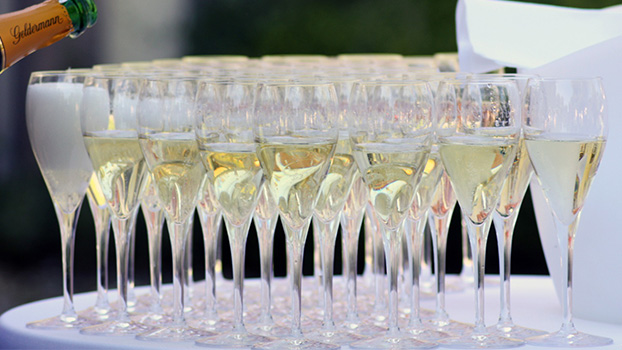 Champagen Glasses and accessories for functions