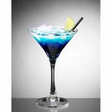 200ml Polycarbonate Martini Glass