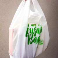 Envirochoice Reusable Plastic Carry Bag